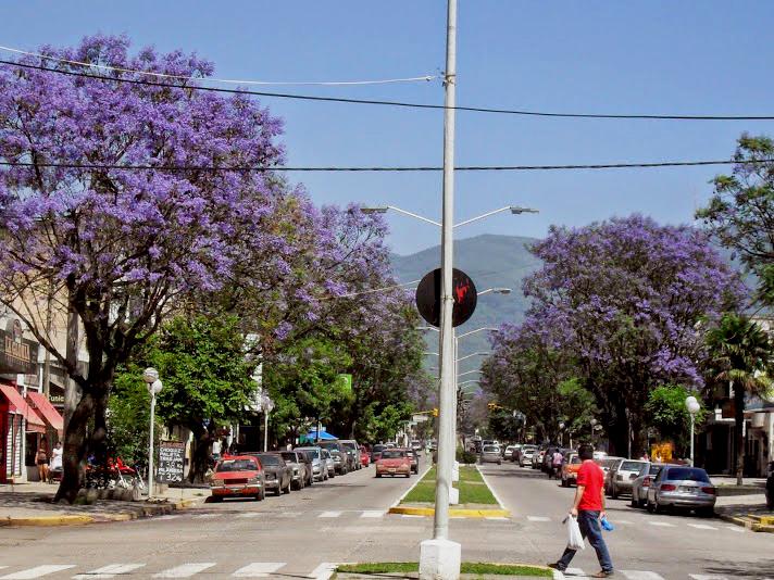 En Tafí Viejo apuestan a revalorizar completamente su avenida principal